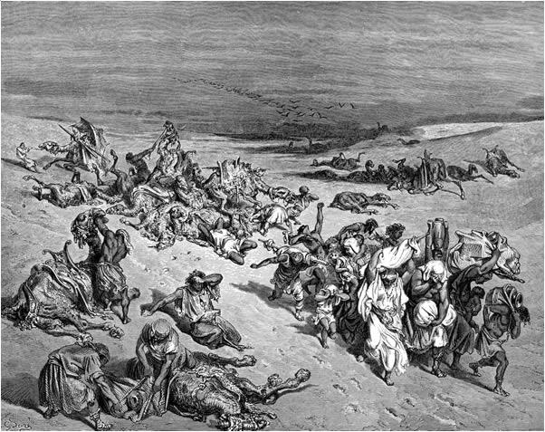 The plague of murrain